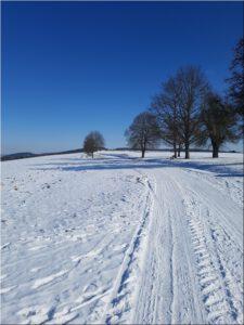 2021-02-12 12.48.08 Winterwanderung auf dem Hoehenweg