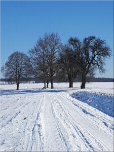 2021-02-12 13.09.22 Winterwanderung auf dem Hoehenweg